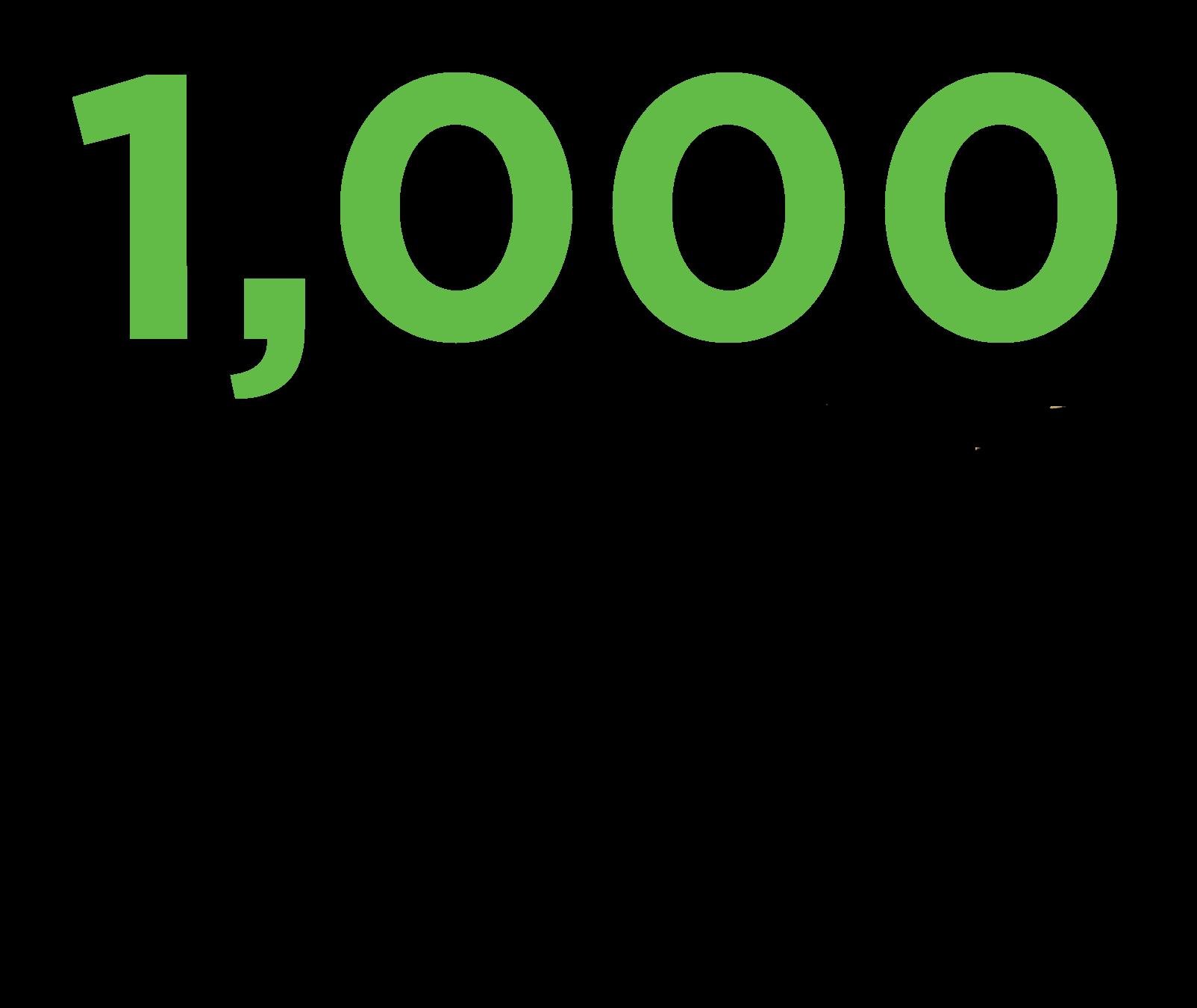Our Big Dream: 1,000 Healthy Churches
